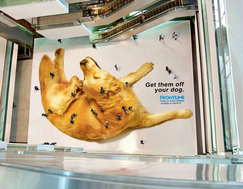 dog flee advert